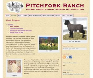 Pitchfork Ranch